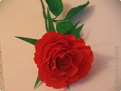 Мастер-класс,  Моделирование, : Алая роза Бумага гофрированная