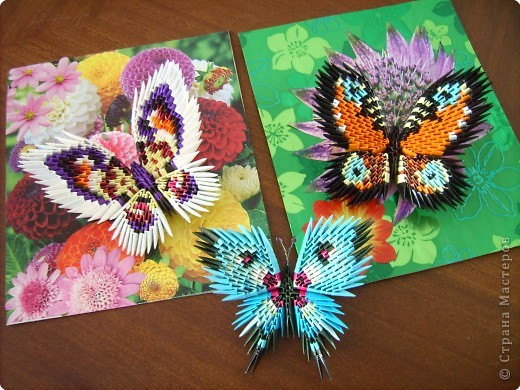 Оригами модульное: бабочки