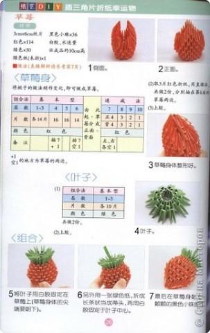 Livro_Origami_VI20282429.jpg