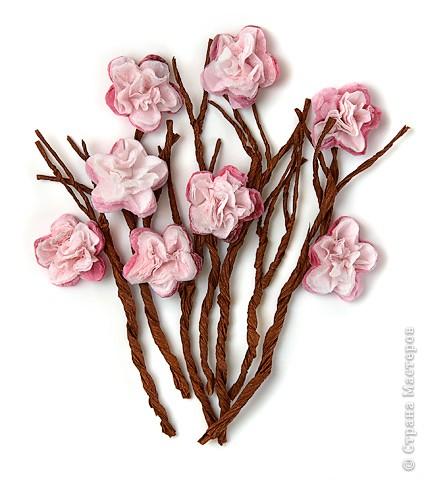 Также в разделах фото цветы высокие