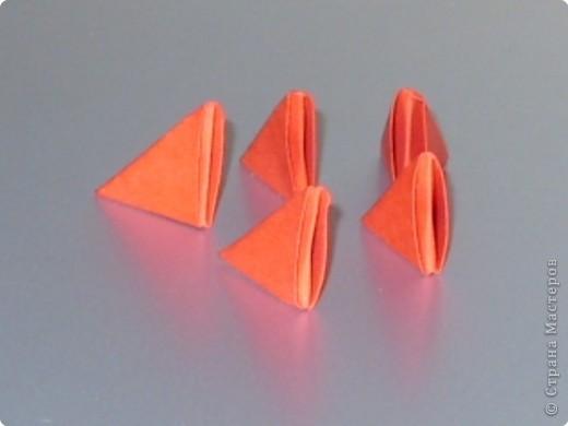 Мастер-класс Оригами модульное: МК на изготовление попугайчика Бумага. Фото 37