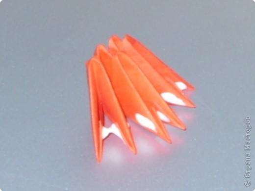 Мастер-класс Оригами модульное: МК на изготовление попугайчика Бумага. Фото 40
