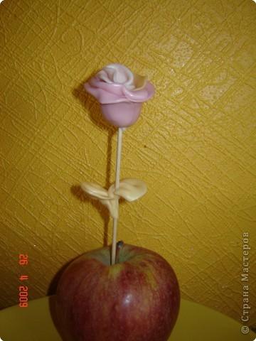 Кулинария, Мастер-класс,  Лепка, : Сладкая розочка 8 марта, . Фото 7