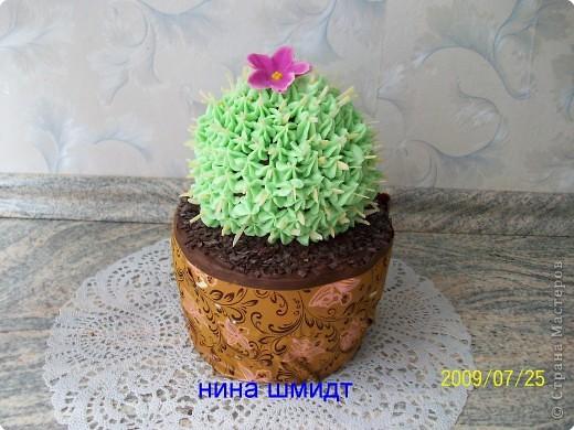 Кулинария: торт..Кактус... Фото 1