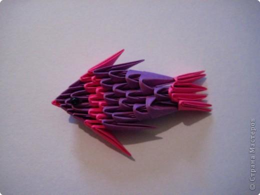 Мастер-класс Оригами модульное: Рыбки.  Бумага.  Фото 16.