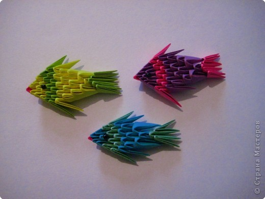Модульные оригами рыбка схема 191
