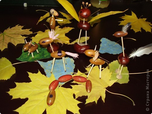 Поделка, изделие: Осенние поделки Материал природный.  Фото 1.