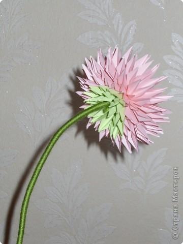 Бумажный цветок на стебле своими руками