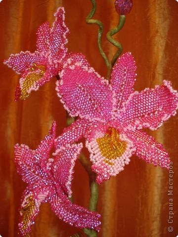 бисероплетение схемы цветы и деревья