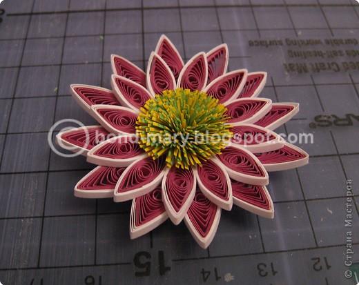 Мастер-класс,  Квиллинг, : Хризантемы сорта Two Tone Pink Бумага . Фото 9