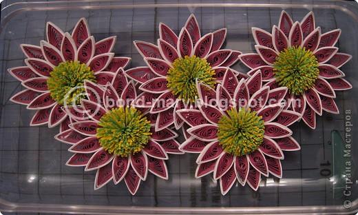 Мастер-класс,  Квиллинг, : Хризантемы сорта Two Tone Pink Бумага . Фото 10