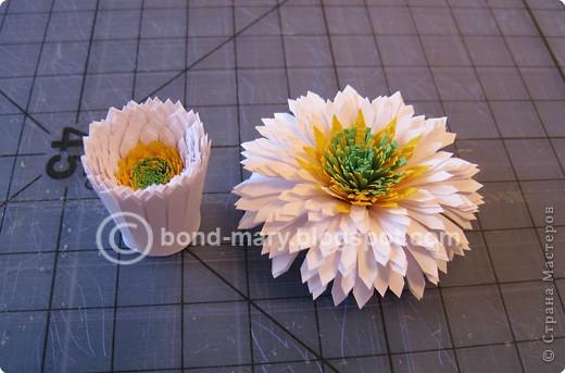 Мастер-класс Квиллинг: Летние хризантемы Бумага. Фото 10