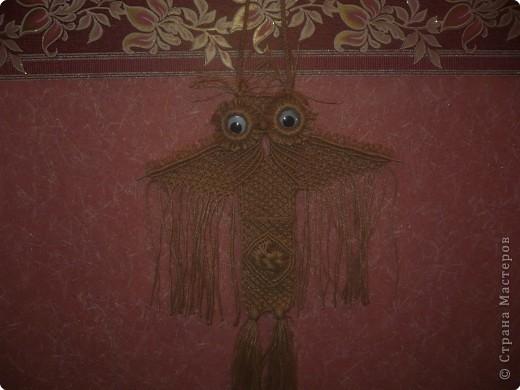 Макраме: Сова-карман Нитки.  Фото 2.