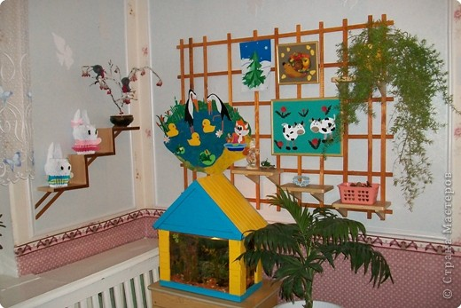 Уголок природы в детском саду страна