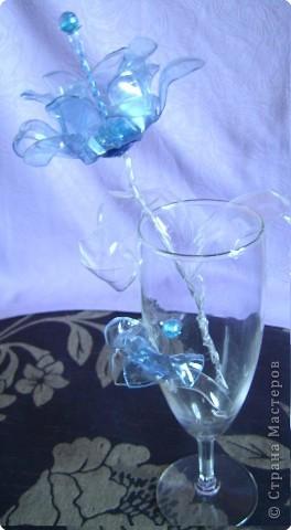 Поделка, изделие: хрустальный звон Бутылки. Фото 8