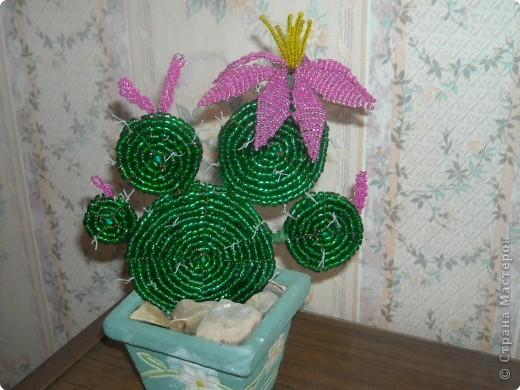 Бисероплетение: Еще один кактус из бисера Бисер