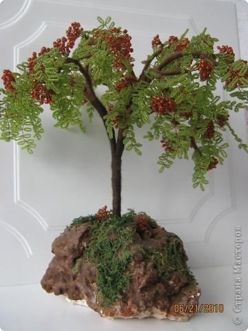 "Дерево с бисера "" Рябина """