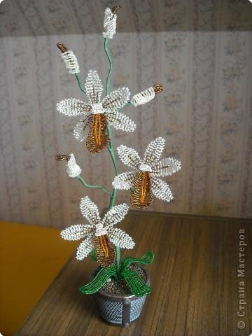 Бисероплетение: Орхидея.Бисер. Бисер