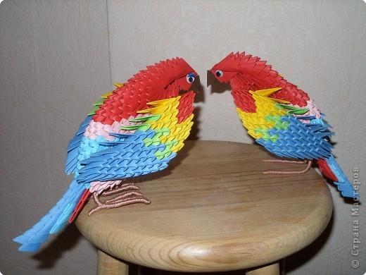 Поделки попугай своими руками