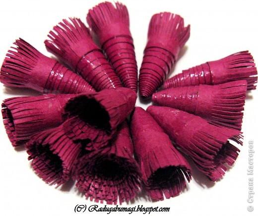 Квиллинг: Каттлея (лат. Cattleya) — семейство Орхидные. Фото 5