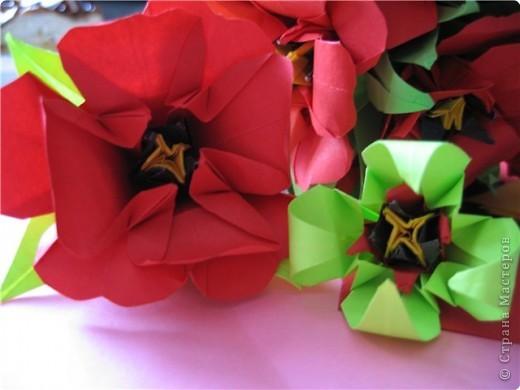 """цветок состоит из 5 элементов. один модуль """"лилия"""" зеленого цвета, бумага размером 10см. два модуля красного или розового цвета(приближенного к цвету маковых лепестков) размер 9см. и, серединка. состоит из двух модулей сделанных как модуль""""супер шар"""". один черного цвета (6см) и желтого цвета (5см). для сердцевинки, делаем модули как для """"супер шара"""", только в укороченном варианте - не разворачивая модуль внутрь.. Фото 2"""