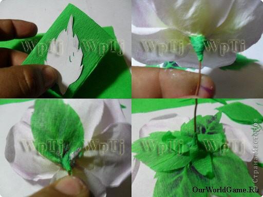 Как сделать из гофрированной бумаги листики