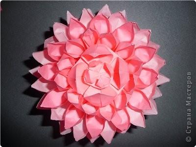 Мастер-класс Оригами: Делаем лотос Бумага
