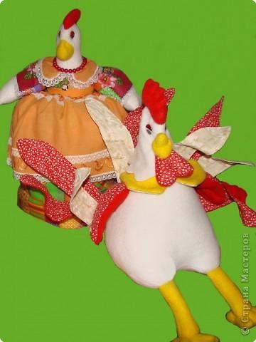 Отказали ноги у курицы, что с ней такое? Крупнейший 1