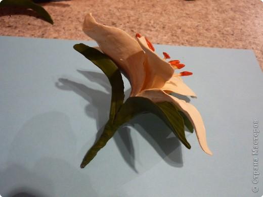 Мастер-класс Лепка: МК как сделать лилию Фарфор холодный. Фото 19