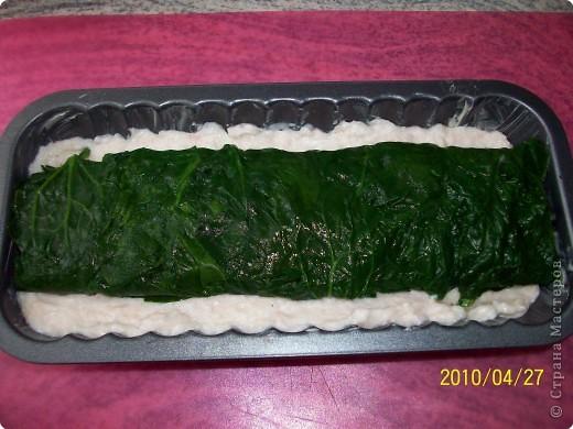 Кулинария: Паштет рыбный.. Фото 10