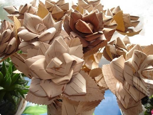 Поделка, изделие: розы из бересты Береста. Фото 1