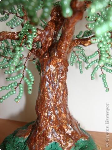 Мастер-класс Бисероплетение: МК - гипсовый ствол для бисерного дерева Бисер, Гипс. Фото 11