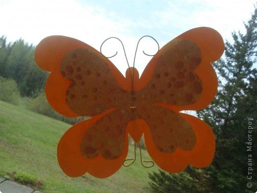 Поделка, изделие Аппликация, Вырезание: Бабочки по одному трафарету. Бумага, Картон, Ленты, Проволока. Фото 3