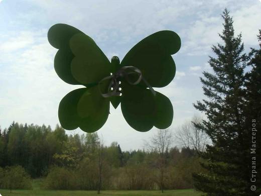 Поделка, изделие Аппликация, Вырезание: Бабочки по одному трафарету. Бумага, Картон, Ленты, Проволока. Фото 5