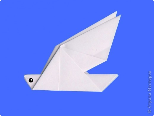 ...развитие Оригами: Оригами.  Голубь и черепаха.  Занятие 19.