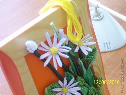Макраме: Мои цветы.  Нитки.  Фото 2.