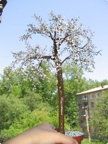 Бисероплетение: Дерево счастья Бисер День рождения.  Фото 3.