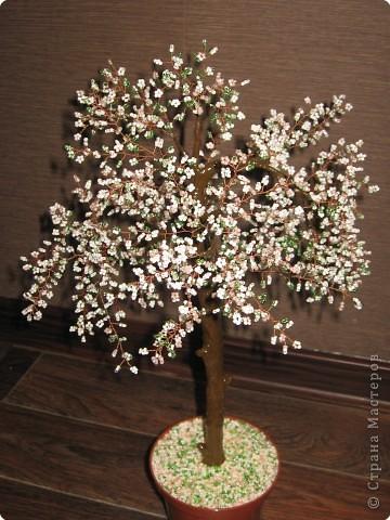 Бисероплетение: Дерево счастья Бисер День рождения.  Фото 2.