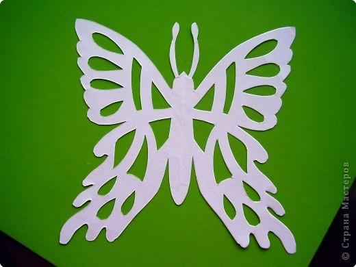 Мои бабочки трафареты бумага фото 2