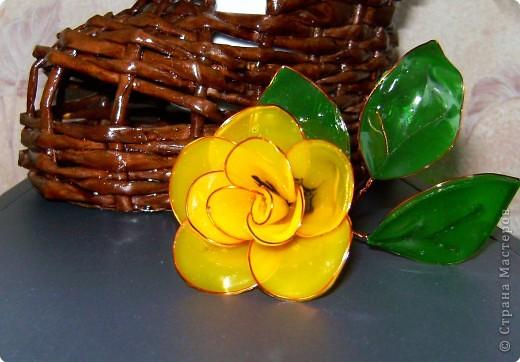 Поделка, изделие Витраж: Мои цветочки Краска, Проволока. Фото 1