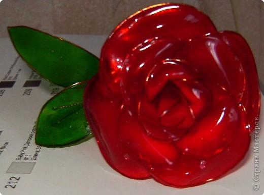 Поделка, изделие Витраж: Мои цветочки Краска, Проволока. Фото 2