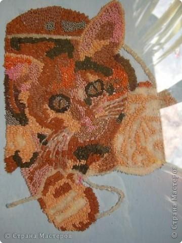 Внеклассная работа Аппликация: Кошка из риса и пшена Крупа.  Фото 2.