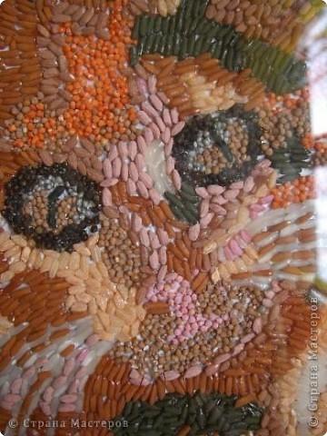 Внеклассная работа Аппликация: Кошка из риса и пшена Крупа.  Фото 3.