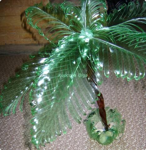 Поделка, изделие Вырезание: Пальма из пластиковой бутылки зелёненькая Бутылки. Фото 1