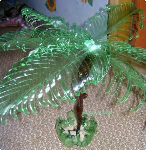 Поделка, изделие Вырезание: Пальма из пластиковой бутылки зелёненькая Бутылки. Фото 3