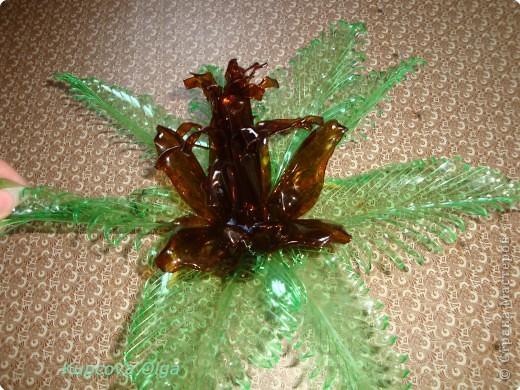 Поделка, изделие: Цветок из пластиковой бутылки№2 Бутылки. Фото 5
