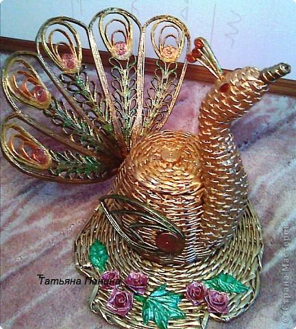 Плетение: Павлин Материал бросовый