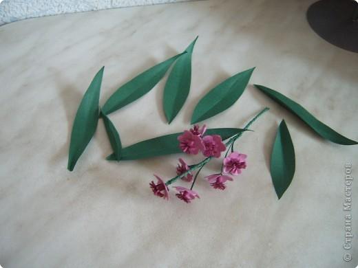 Мастер-класс Квиллинг: Цветочки розовые + МК Бумага. Фото 5
