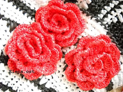 Декор предметов Вязание, Вязание крючком: Сумка из полиэтиленовых пакетов  Материал бросовый День рождения. Фото 3
