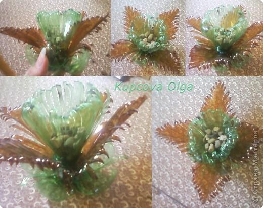 Поделка, изделие Вырезание симметричное: Цветок из пластиковой бутылки Бутылки. Фото 2